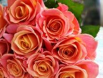 Ramo hermoso de las rosas Foto de archivo