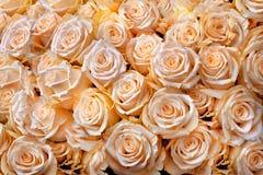 Ramo hermoso de rosas color nata. Fondo abstracto. Fotografía de archivo