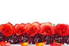 Ramo hermoso de rosas rojas con los claveles imagen de archivo
