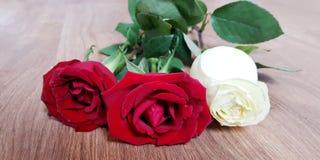 Ramo hermoso de rosas rojas y blancas - ascendente cercano Imagenes de archivo