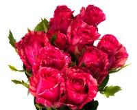 Ramo hermoso de rosas rosadas Fotografía de archivo libre de regalías