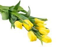 Ramo hermoso de tulipanes de oro, aislado en blanco Fotografía de archivo