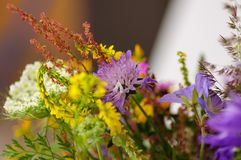 Ramo hermoso de wildflowers brillantes en el florero de cristal Imagen de archivo libre de regalías