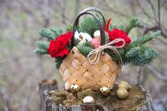 Ramo hermoso del invierno de picea, de manzanas, de claveles y de algodón fotos de archivo libres de regalías