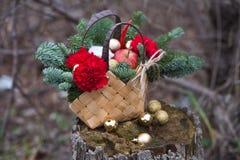 Ramo hermoso del invierno de picea, de manzanas, de claveles y de algodón fotografía de archivo libre de regalías
