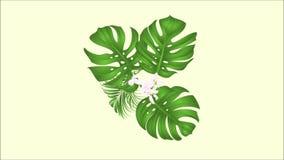 Ramo inconsútil del lazo de la animación video con el arreglo floral de las flores tropicales, con la orquídea amarilla hermosa,  libre illustration