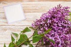 Ramo lilás roxo no fundo de madeira Placa, cartão Fotos de Stock Royalty Free
