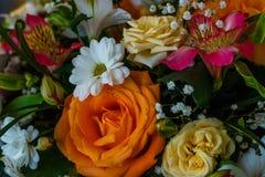 Ramo maravilloso de flores Foto de archivo libre de regalías