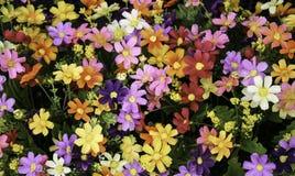 Ramo mezclado de las flores imagenes de archivo