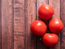 Ramo na tabela de madeira do vintage - ainda vida rural do tomate de cima de, colheita fresca do espaço da cópia do jardim Imagem de Stock