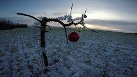 Ramo novo do ano com a decoração do Natal no campo na manhã do inverno filme