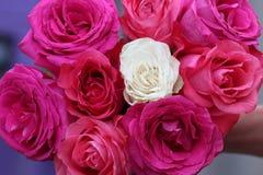 Ramo nupcial de rosas Foto de archivo libre de regalías