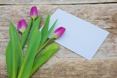 Ramo púrpura del tulipán y tarjeta de felicitación en blanco Imágenes de archivo libres de regalías