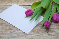 Ramo púrpura del tulipán y tarjeta de felicitación en blanco Fotos de archivo