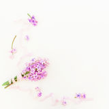 Ramo púrpura hecho de flores y de cintas rosadas en el fondo blanco Endecha plana, visión superior Fotos de archivo libres de regalías