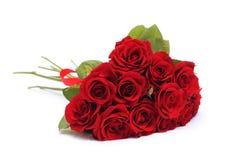 Ramo rojo de las rosas Imagen de archivo libre de regalías
