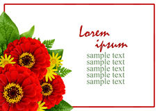 Ramo rojo y amarillo de las flores en una esquina y un marco Imagen de archivo libre de regalías
