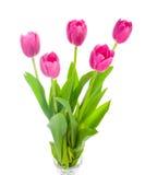 Ramo rosado de cinco tulipanes Imágenes de archivo libres de regalías