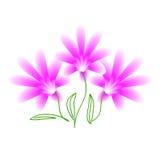 Ramo rosado de la flor Imagen de archivo libre de regalías