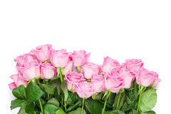 Ramo rosado de las rosas Aislado en blanco Fotografía de archivo