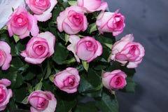 Ramo rosado de las rosas con descensos del agua Foto de archivo