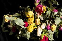 Ramo secado de rosas Imagen de archivo libre de regalías