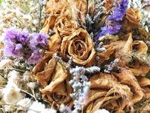 Ramo seco de la flor fotos de archivo