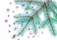 Ramo spruce azul com os cristais para a decoração Fotografia de Stock Royalty Free