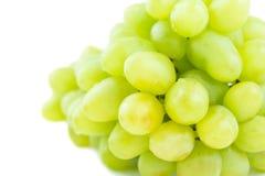 Ramo suculento da uva isolado no branco fotos de stock