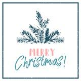 Ramo tirado mão do cone do abeto vermelho da árvore do Feliz Natal Ilustração do Vetor