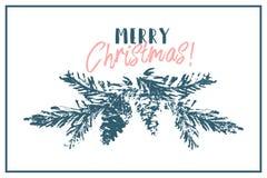 Ramo tirado mão do cone do abeto vermelho da árvore do Feliz Natal Ilustração Stock