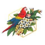 Ramo tropicale dei fiori con il pappagallo dell'ara illustrazione vettoriale