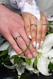 Ramo y anillos Foto de archivo