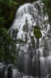 Ramona Falls Close Up Fotografia Stock Libera da Diritti