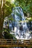Ramona Falls, Oregon Stock Photo