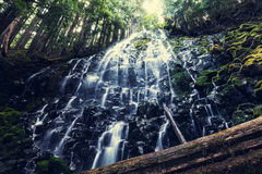 Ramona falls. In Oregon,USA Stock Photography