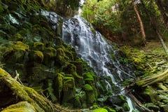 Ramona falls. In Oregon,USA Royalty Free Stock Images