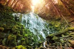Ramona falls. In Oregon,USA Royalty Free Stock Photo