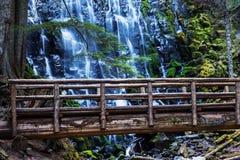 Ramona Falls. In Oregon, USA Royalty Free Stock Photo