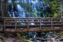 Ramona Falls. In Oregon, USA Stock Photo