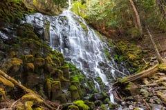 Ramona Falls Royalty Free Stock Photography