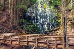 Ramona Falls Royalty Free Stock Photo