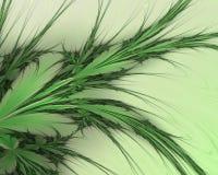 Ramos abstratos verdes em um fundo branco imagem de stock royalty free