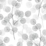 Ramos com folhas redondas Fundo da aguarela Teste padrão sem emenda 11 Imagens de Stock