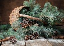 Ramos da árvore de abeto azul em uma cesta rústica na tabela de madeira Imagem de Stock Royalty Free