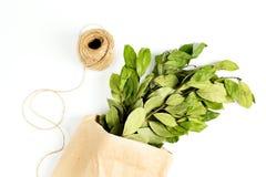 Ramos das folhas de louro do louro no saco de papel Imagem de Stock