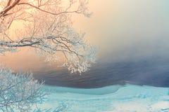 ramos de árvore cobertos com a neve e a geada perto do rio Imagem de Stock Royalty Free
