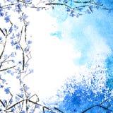 Ramos de árvore da flor da aquarela ilustração do vetor
