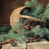 Ramos de árvore do abeto em uma cesta rústica em de madeira Imagens de Stock Royalty Free