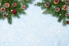 Ramos de árvore do abeto do Natal com os cones no fundo azul Copie o espaço Fotografia de Stock